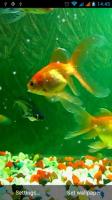 Aquarium Live Wallpaper for PC