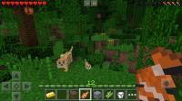 Minecraft: Pocket Edition APK