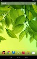 Leaf Live Wallpaper APK