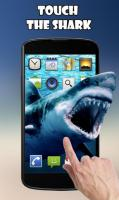 Shark Attack Live Wallpaper for PC