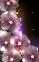 Glowing Flowers Live Wallpaper APK