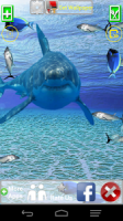 Angry Shark Pet Cracks Screen APK