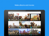 Google Photos for PC