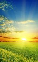 Perfect Sunrise Live Wallpaper for PC