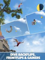 Flip Diving for PC