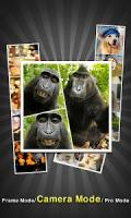 PicFrame - Photo Collage APK