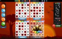 Bingo! Free Bingo Games for PC